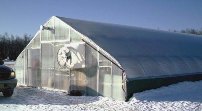 Как построить теплицу для зимнего выращивания?